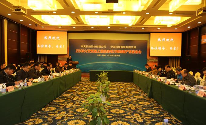ZTT succeeds in developing 220kV overland power cable