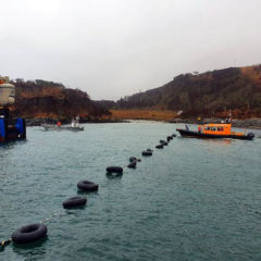 Jura-mainland submarine cable replacement commenced