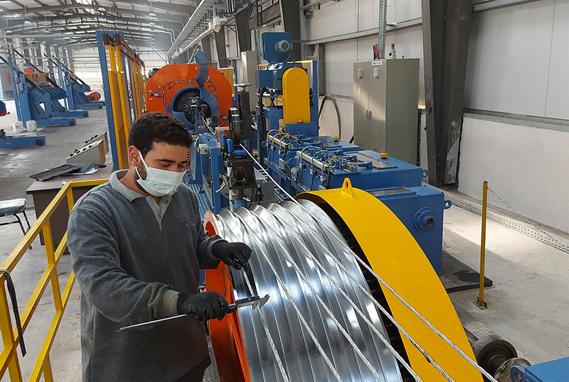 LS Cable & System completes construction of its first plant in Africa