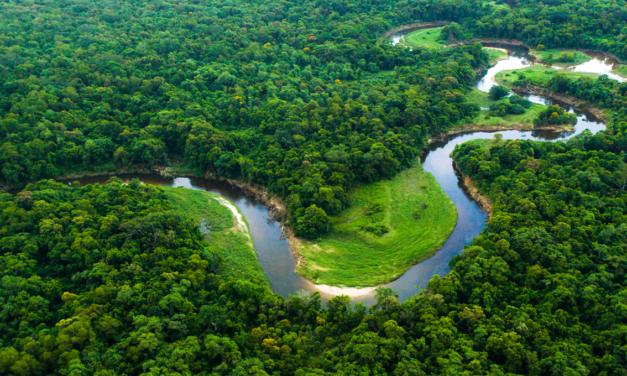 Prysmian Group to supply submarine telecom cables to Amazon Region